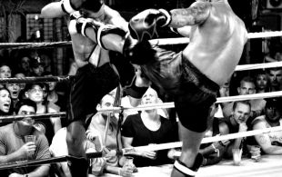 img_0233-bbq-fights-tiger