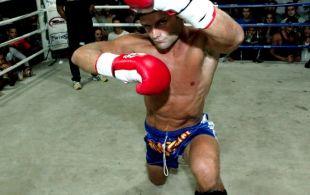 img_0361-bbq-fights-tiger