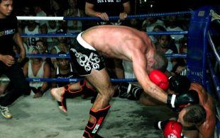 img_0385-bbq-fights-tiger