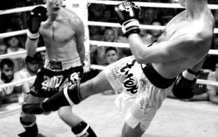 img_0445-bbq-fights-tiger