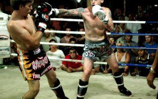 img_0467-bbq-fights-tiger_0