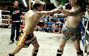 img_0489-bbq-fights-tiger