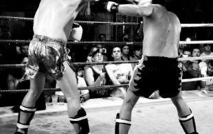img_0500-bbq-fights-tiger
