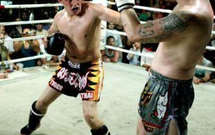 img_0515-bbq-fights-tiger