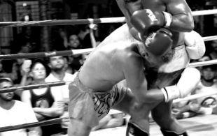 img_0638-bbq-fights-tiger