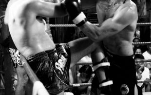 img_0776-bbq-fights-tiger