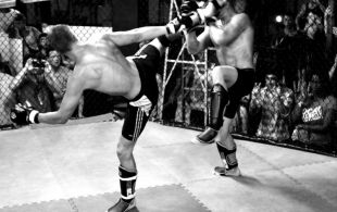 img_0867-bbq-fights-tiger
