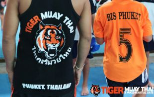 kids_train__tiger_mark_12