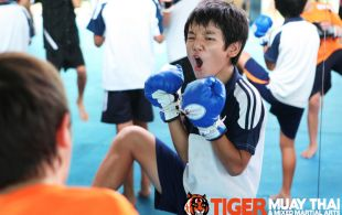 kids_train__tiger_mark_13
