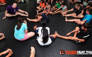 kids_train__tiger_mark_19