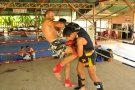 Elvis Sinosic prepares for UFC fight with Tiger Muay Thai Trainers