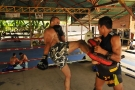 Elvis Sinosic trains at Tiger Muay Thai in preparation for UFC 110 - Phuket,Thailand - January 2010