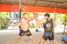 Former UFC Middleweight Champion Dave Menne trains at Tiger Muay Thai - Phuket,Thailand - January 2010