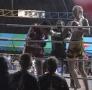 veronika_fight_3.jpg