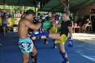 Tiger Muay Thai and MMA training camp guests: December 2010