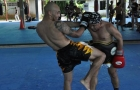 Tiger Muay Thai and MMA training camp guests: January 2011