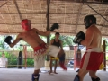 The Evolution of Tiger Muay Thai: History (Part 3)