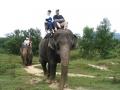 elephant_ride_1.jpg