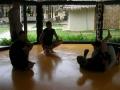 mma_training_jp_4.jpg