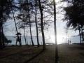 nai_harn_picnic_area_1.jpg