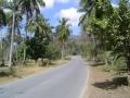 road_running_1.jpg