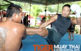 MMA Fighters @TigerMuayThai - Phuket, Thailand training October 2011