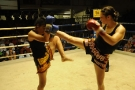 Tiger Muay Thai and MMA Training Camp fights November 16-17, 2009 Phuket, Thailand