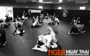 Murilo Bustamante Grappling Seminar, March 28, 2013