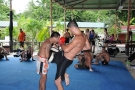 Tiger Muay Thai Training Camp Guests October 2008 #2