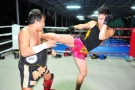 Personal Tiger Muay Thai Training sessions: One-on-one