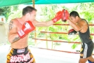 UFC Champion Jake Shields trains at Tiger Muay Thai and MMA