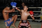 Tiger Goes 4-1 over two nights of Thai Boxing fights in Phuket,Thailand - 3rd and 4th December 2009