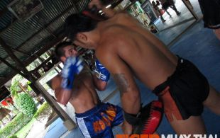Tiger Muay Thai & MMA Training Camp Advanced Muay Thai Class April 18, 2012