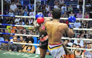 Tiger Muay Thai & MMA Training Camp Fights April 12, 2013, including TMT Petdam