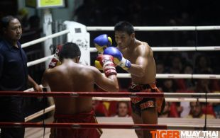 Tiger Muay Thai & MMA Training Camp Fights December 24, 2012 including TMT Robert The Terminator