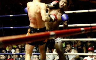 img_3899-patong-muay-thai-copy