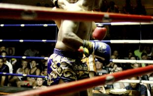 img_3994-patong-muay-thai-copy