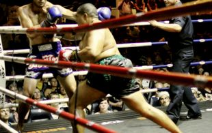 img_4116-patong-muay-thai-copy