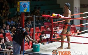 Tiger Muay Thai & MMA Training Camp Fights June 3, 2013