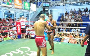 Tiger Muay Thai & MMA Training Camp Fights November 9, Including TMT Ritt