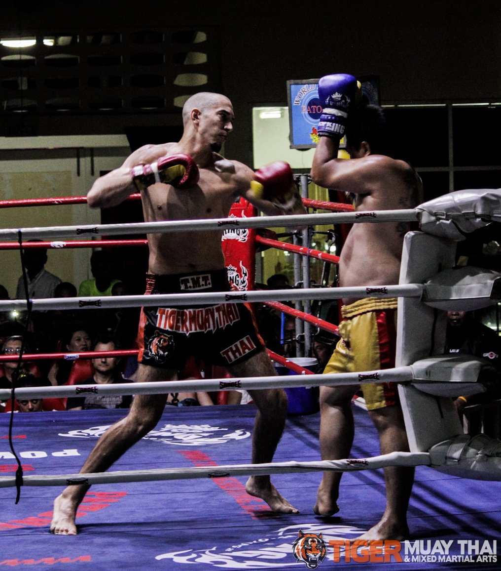 Thai Training Camps Tiger Muay Thai Mma Training