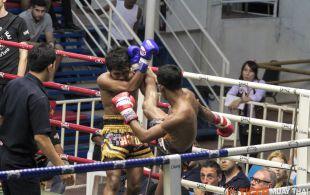 Tiger Muay Thai & MMA Training Camp Guest Fights January 22nd, 2014 including Matt Merria, Dillion Croushorn and Tiger Muay Thai Trainer Phetdam at Bangla Stadium in Phuket, Thailand.
