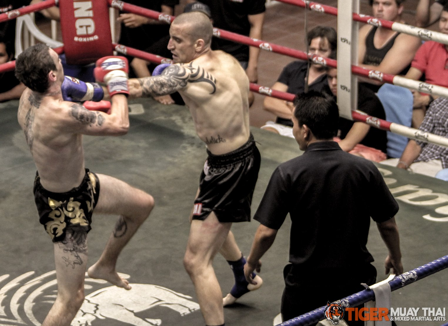 Boxing camps : Samsung galaxy note 10 1 n8000