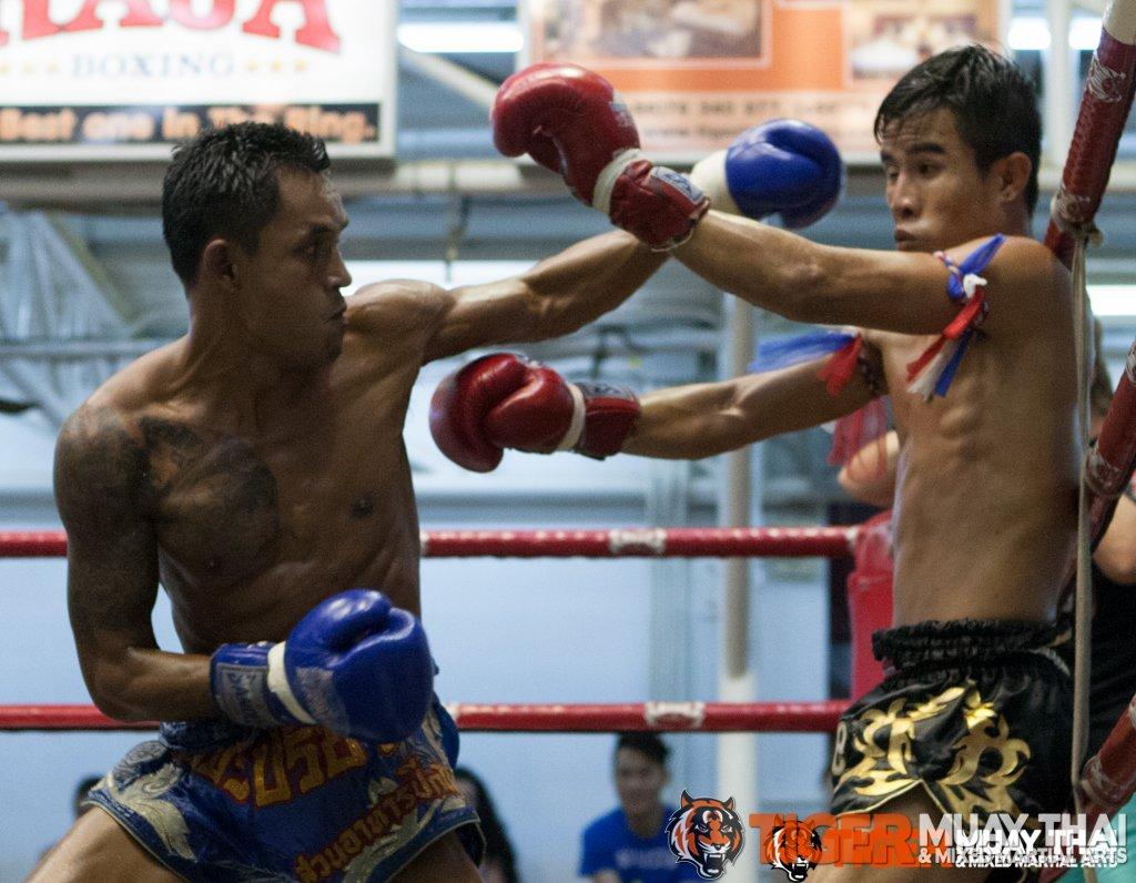 amateur muay thai fight