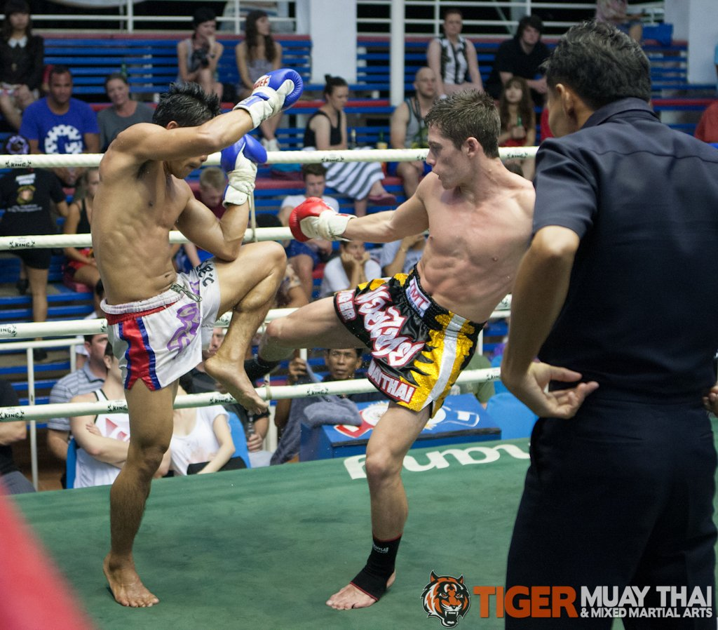 fighting thai 187 tiger muay thai amp mma training camp guest