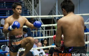 Tiger Muay Thai fighter Sake fights at Bangla stadium in Phuket, Thailand, Sunday, Jun. 9, 2013. (Photo by Mitch Viquez ©2013)