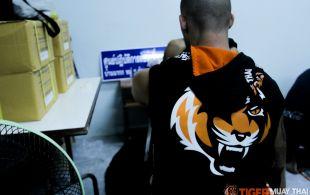 tiger1-3-14-2_0