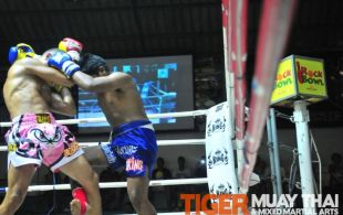 Tiger Muay Thai & MMA Training Camp Guest Fights March 4, 2013