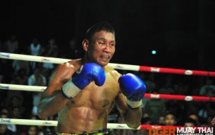 Tiger Muay Thai & Training Camp Fights November 10, 2012 including TMT Robert the Terminator
