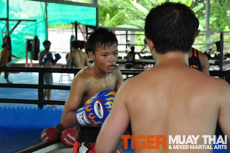 Fighting Thai » Tiger Muay Thai Training Camp Guest Photos: May 2011